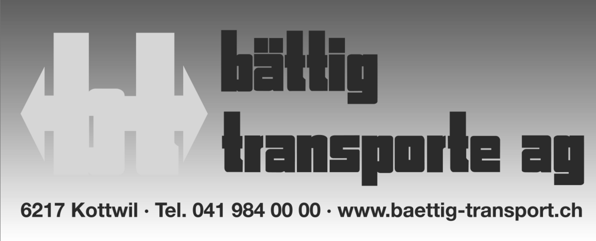 modules/mod_vina_pogo_image_slider/samples/csm_baettig-transporte_bb693bd183.png