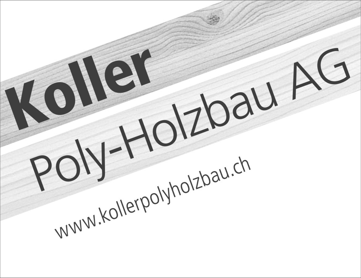 modules/mod_vina_pogo_image_slider/samples/csm_koller-polyholzbau_01b02f3f07.png